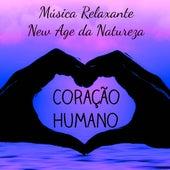Coração Humano - Musica Relaxante New Age da Natureza para Dormir Bem Poder da Mente Massagem Terapêutica de Various Artists