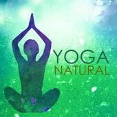 Yoga Natural - Musica para Yoga Restaurativo, Sonidos de la Naturaleza para Sanar el Corazon by Yoga del Mar