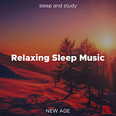 Relaxing Sleep Music: Long Playlist of Relaxing Soft Piano Music to Sleep and Study de Various Artists