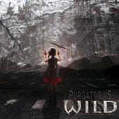 Purgatorius by Wild