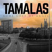 Some Sort of Angel by Tamalas