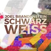 Schwarzweiss (Radio Edit) von Joel Brandenstein