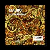 Slave Guitar by Malibu