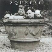Play de Squeeze