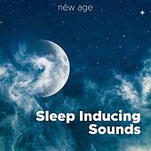 Sleep Inducing Sounds - Powerful Mental Massage Brain Music for Falling Asleep de Various Artists
