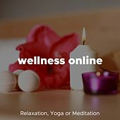 Wellness Online - Relaxing Music for Relaxation, Yoga or Meditation de Various Artists