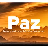 Paz - Musica Instrumental para Descansar de Various Artists