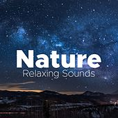 Nature - Relaxing Sounds to Soothe your Mind and Body de Various Artists