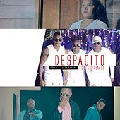 Despacito (Salsa Urbana) by Los Supremos
