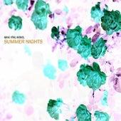 Summer Nights by King Ital Rebel