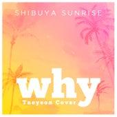 Why de Shibuya Sunrise