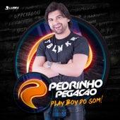 Playboy do Som (Ao Vivo) de Pedrinho Pegação