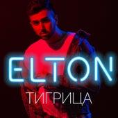 Тигрица by Elton