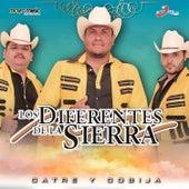 Catre y Cobija by Los Diferentes De La Sierra