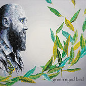 Green Eyed Bird von Jonathan Foster