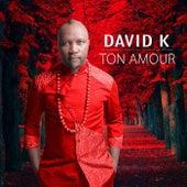 Ton Amour by David K.