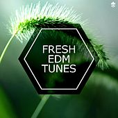 Fresh EDM Tunes by Various Artists