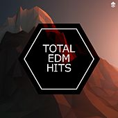 Total EDM Hits by Various Artists