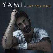 Intensidad by Yamil
