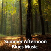 Summer Afternoon Blues Music de Various Artists