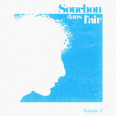 Souchon dans l'air (Vol. 1) by Various Artists