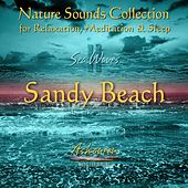 Nature Sounds Collection: Sea Waves, Vol. 2 (Sandy Beach) by Ashaneen