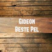 Beste Pel by Gideon