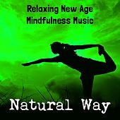 Natural Way - Relaxing New Age Mindfulness Music for Yoga Mantras Chakras Meditation Brain Training with Instrumental Nature Sounds by Various Artists