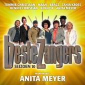 Beste Zangers Seizoen 10 (Aflevering 6 - Hoofdartiest Anita Meyer) van Various Artists