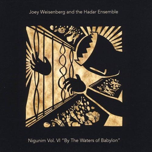 Nigunim, Vol. VI: By the Waters of Babylon by Joey Weisenberg
