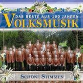 Das Beste aus 100 Jahre Volksmusik - Schöne Stimmen de Various Artists