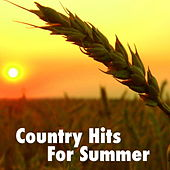 Country Hits For Summer de Various Artists