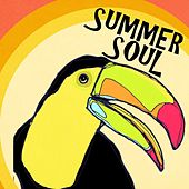 Summer Soul von Various Artists