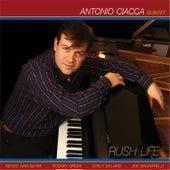 Rush Life by Antonio Ciacca