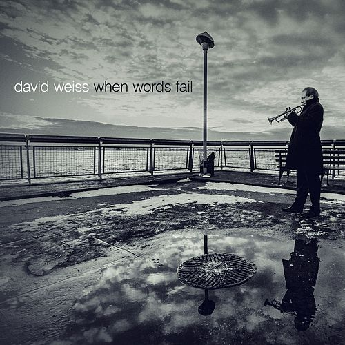 When Words Fail by David Weiss