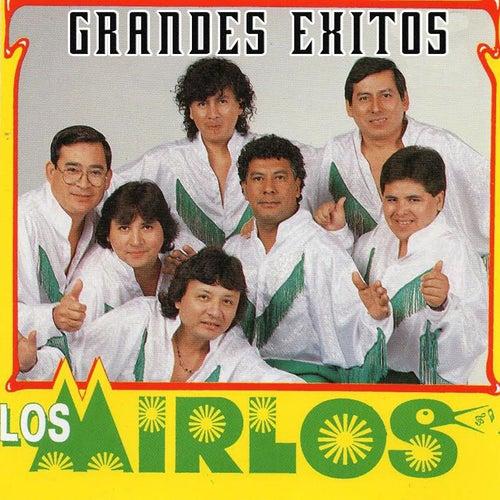 Grandes Éxitos by Los Mirlos