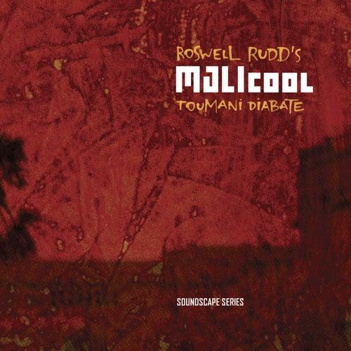 Malicool by Toumani Diabaté