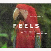 Feels (feat. Katy Perry, Pharell Williams & Big Sean) von Calvin Harris