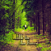Walk in the Forest – Nature Relaxing Sounds, New Age Music, Stress Relief by Nature Sound Series