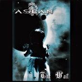 The Wait de Aslan
