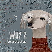The Wild Honey Pie Buzzsession by Why?