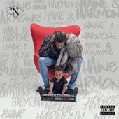 Haine & Harmonie de Ang