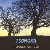 Tso Much Stuff to Do by Tsonoma