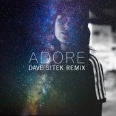 Adore (Dave Sitek Remix) di Amy Shark