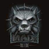 Till I Die (CD1 Radio Edits) van DJ Mad Dog