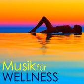 Musik für Wellness - Tiefenentspannung Harmonie für Sauna & Massage by Hintergrundmusik Akademie Club