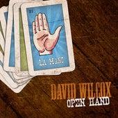 Open Hand by David Wilcox