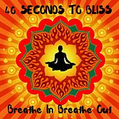Breathe in Breathe out 40 Seconds to Bliss by Ananda Jnana