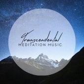 Transcendental Meditation Music by Various Artists