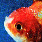 Big Fish Theory de Vince Staples